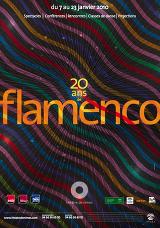 Janvier2010 activ &gr; flamenco