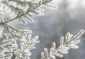 Dec2013 Irmactiv &gr; fermeture d'hiver